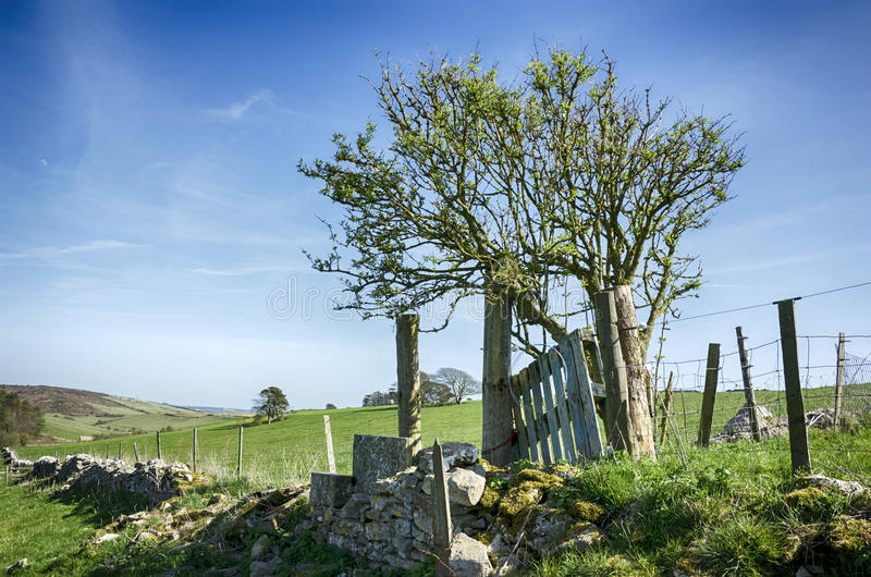 Download Dorset Countryside stock photo. Image of wire, landscape - 30683140