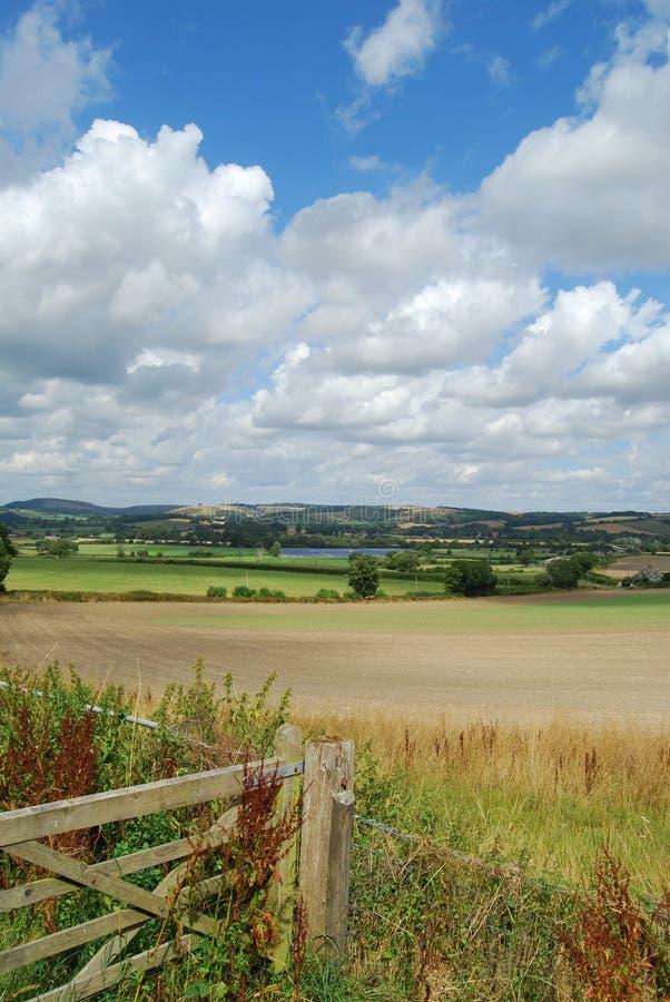 Dorset del nord Rolling Hills fotografie stock libere da diritti