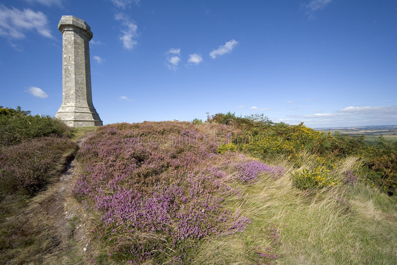 dorset england härdad monument thomas royaltyfri bild