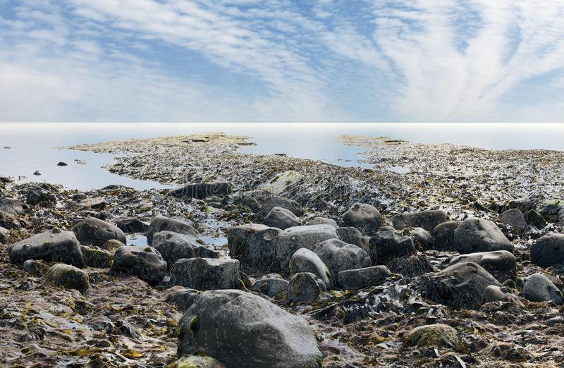 Dorset Kimmeridge brzegowa UK zatoka zdjęcie royalty free