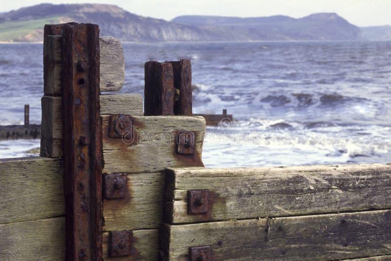 Dorset - Lyme Regis strand royaltyfri bild