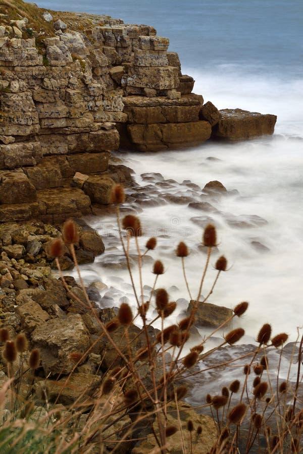 Dorset-Meerblick lizenzfreie stockfotos