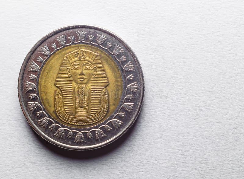 Dorso de la moneda de libra egipcia con la imagen del SP imagenes de archivo
