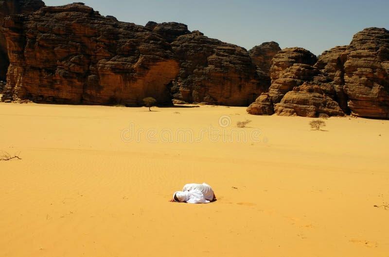 Dorstig in de woestijn stock foto's