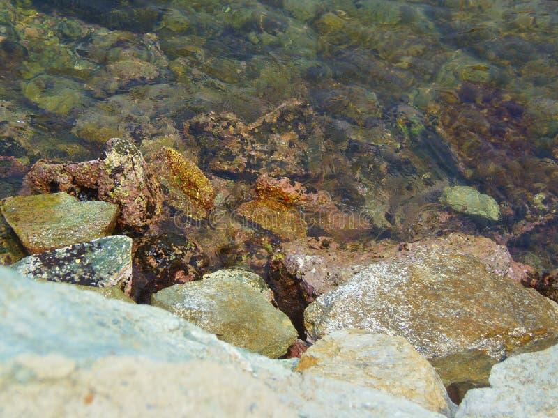 Dort ` s eine Unterwasserwelt lizenzfreies stockbild