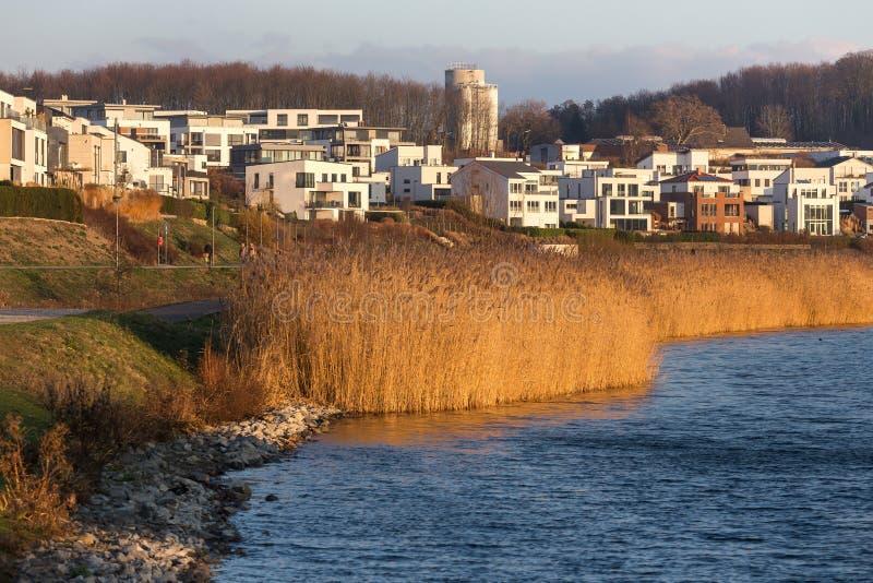 Dortmund Tyskland phoenixseesjö i vintern royaltyfri fotografi
