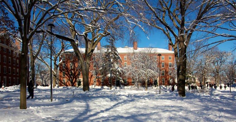 Dortoir de campus d'Université de Harvard après une tempête de neige image libre de droits