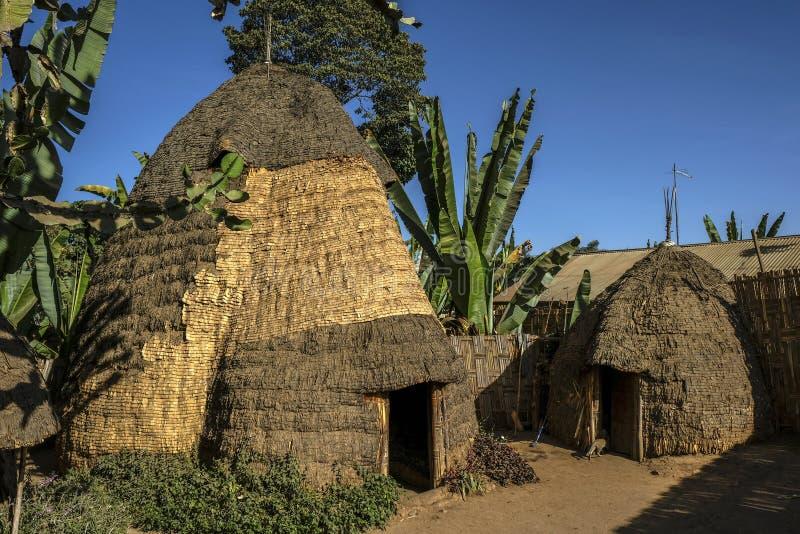 Dorze folkgrupp på den Chencha byn ethiopia arkivbild