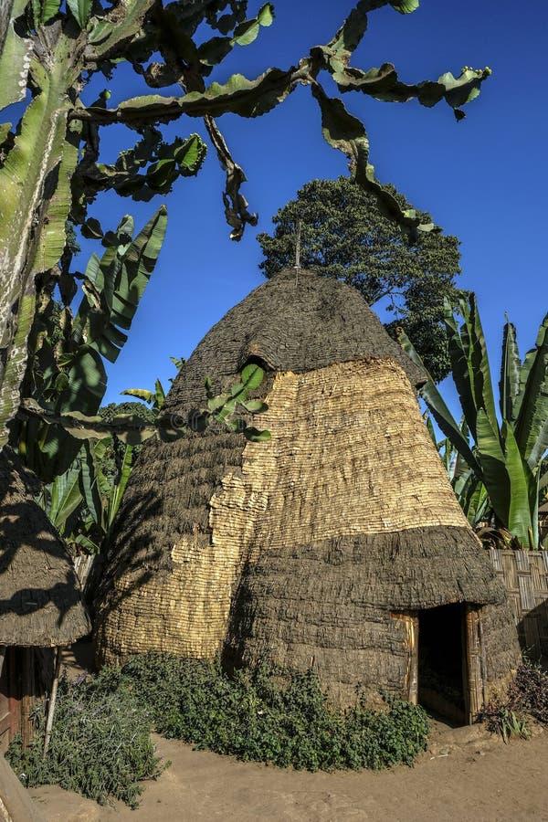Dorze folkgrupp på den Chencha byn ethiopia royaltyfria foton