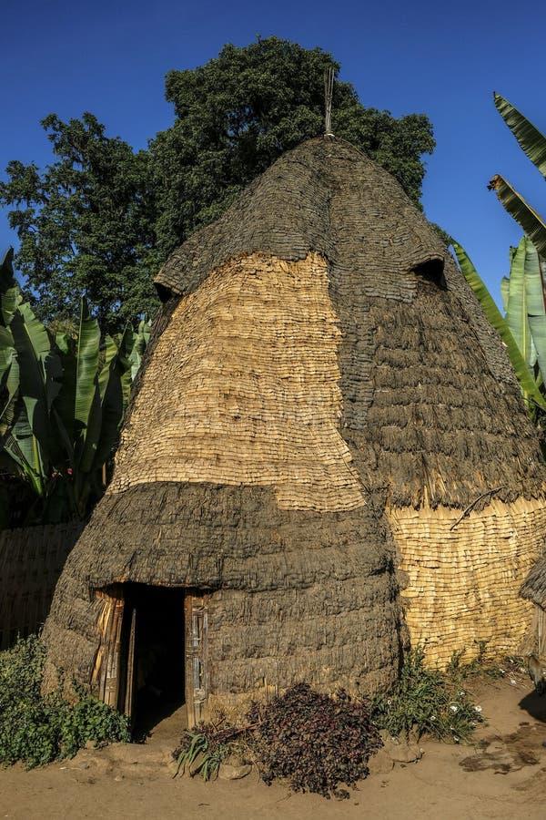 Dorze folkgrupp på den Chencha byn ethiopia royaltyfri foto