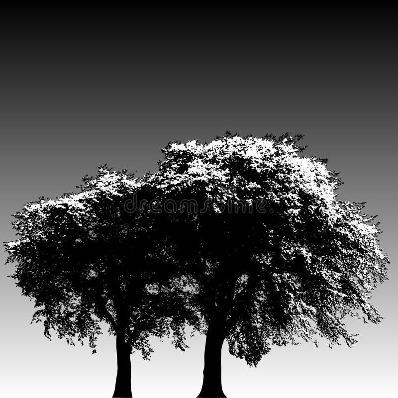 Dos árboles stock de ilustración