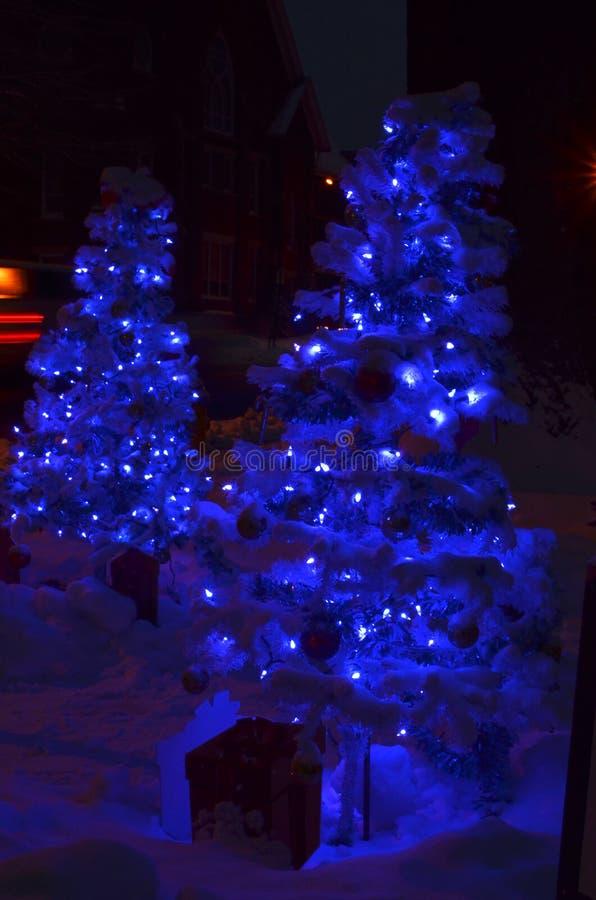 Dos árboles de navidad azules en la nieve de luces de la noche en la tierra fotos de archivo