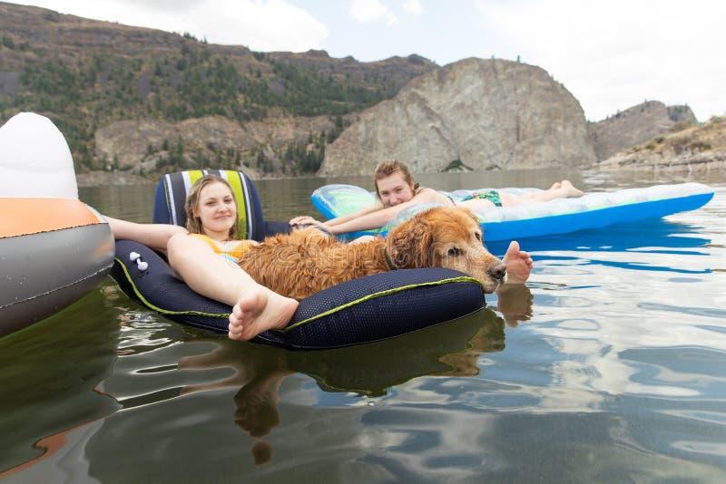 Dos adolescentes y un salón del perro del golden retriever comfortablemente en inflatables en un lago imagen de archivo