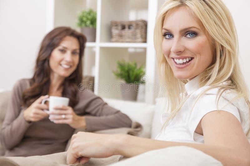 Dos amigos de las mujeres que beben té o el café en el país foto de archivo libre de regalías