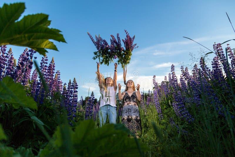 Dos amigos femeninos en un campo de lupines púrpuras foto de archivo