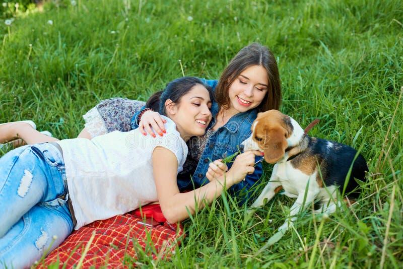 Dos amigos y beagles Mujer feliz joven dos, divirtiéndose fotografía de archivo libre de regalías