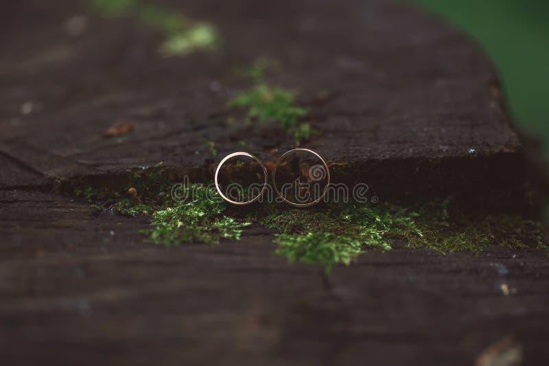 Dos anillos de bodas en muestra del infinito Concepto del amor Dep muy pequeño fotos de archivo libres de regalías