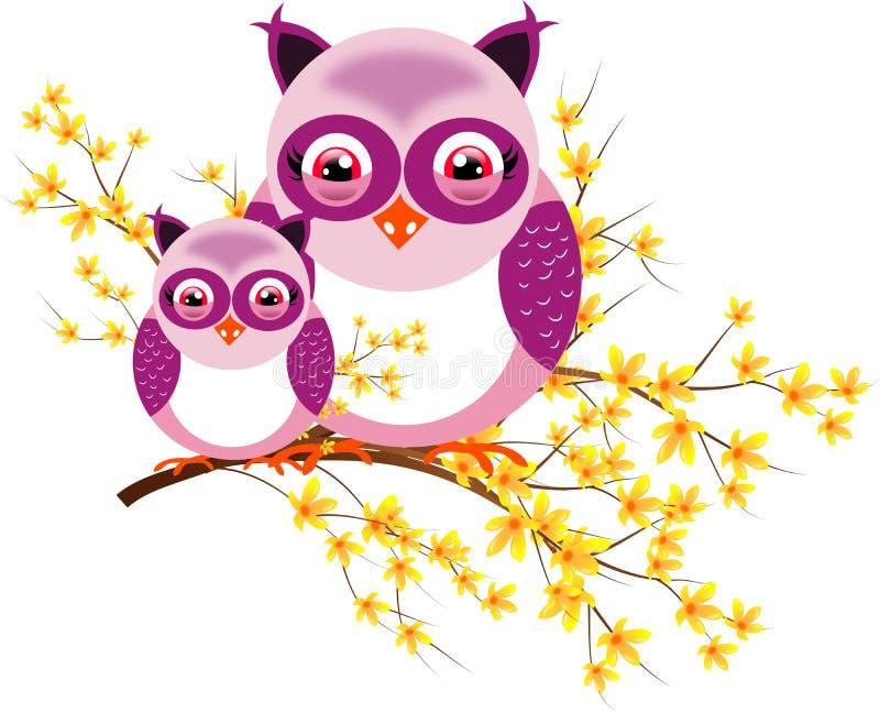Dos búhos púrpuras en codeso libre illustration