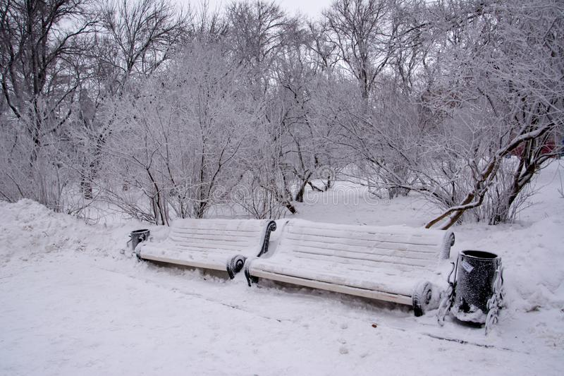 Dos bancos nevados imagen de archivo