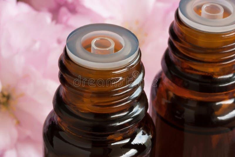 Dos botellas de aceite esencial con los flores rosados en el fondo foto de archivo libre de regalías