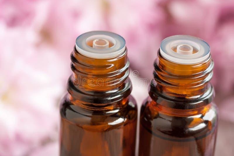 Dos botellas de aceite esencial con los flores rosados en el fondo imagen de archivo libre de regalías