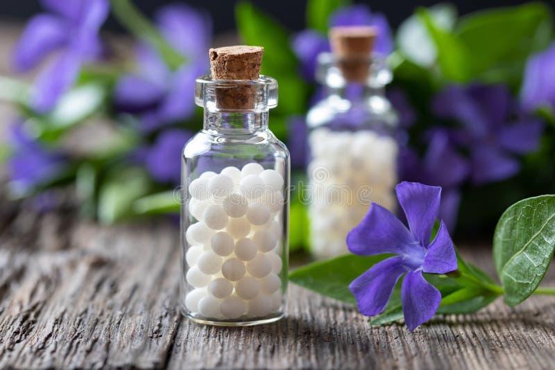 Dos botellas de remedio homeopático de menor importancia del vinca imagenes de archivo