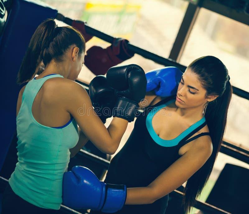 Dos boxeadores de sexo femenino jovenes en el entrenamiento fotografía de archivo