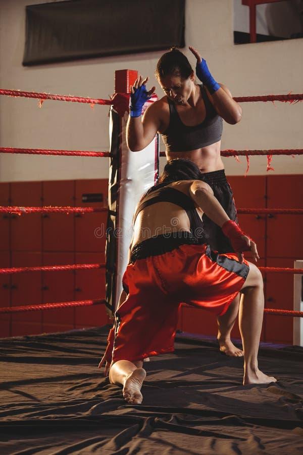 Dos boxeadores de sexo femenino que luchan en el anillo foto de archivo libre de regalías