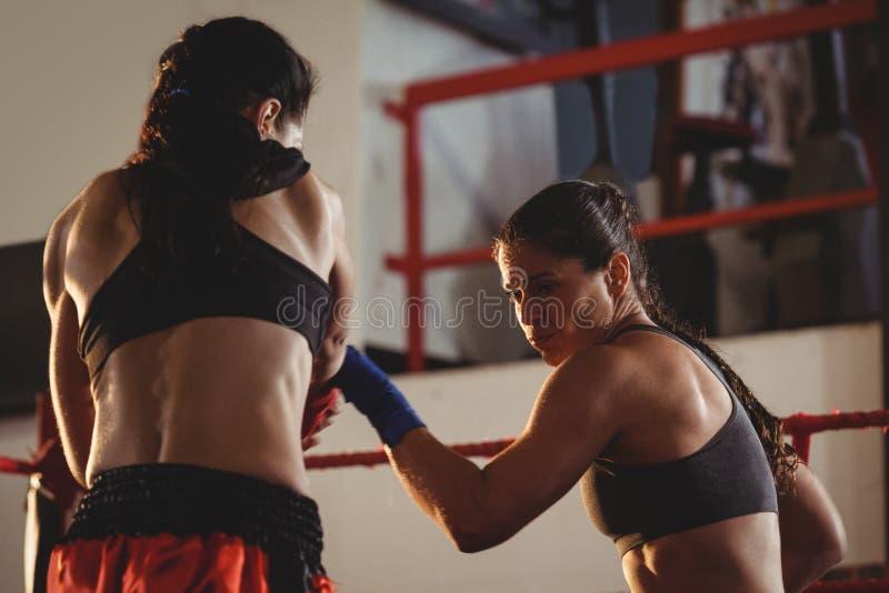 Dos boxeadores de sexo femenino que luchan en el anillo imagenes de archivo