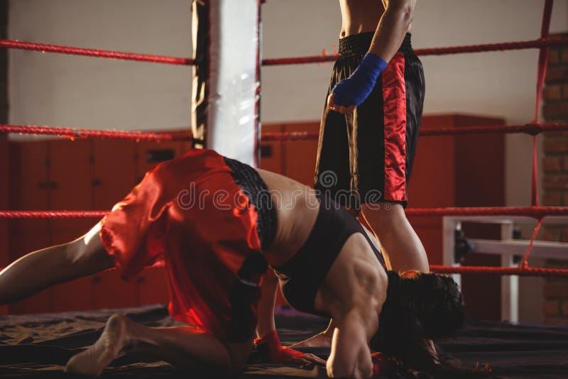 Dos boxeadores de sexo femenino que luchan en el anillo fotografía de archivo libre de regalías