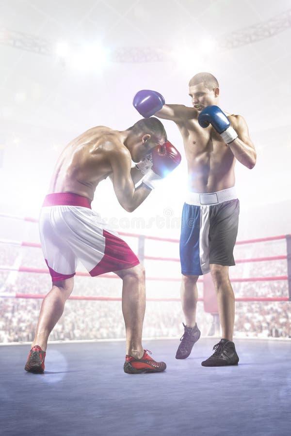 Dos boxeadores del professionl están luchando en arena foto de archivo