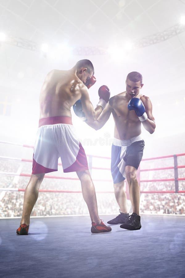Dos boxeadores del professionl están luchando en arena foto de archivo libre de regalías