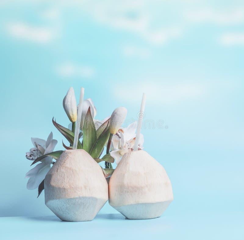 Dos cócteles del coco en cocos frescos en el fondo del cielo azul Bebidas tropicales del verano fotos de archivo