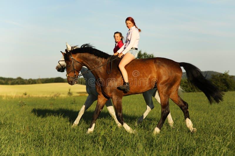 Dos caballos de montar a caballo de la chica joven en el paseo por tarde del verano fotos de archivo