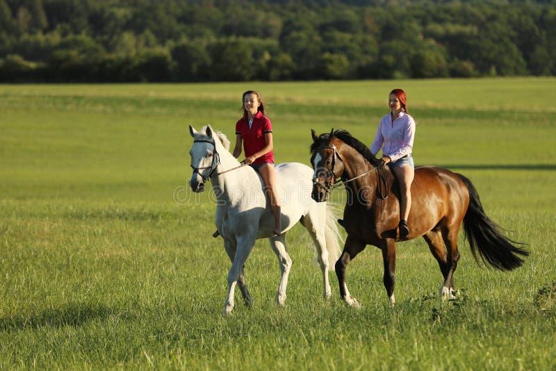 Dos caballos de montar a caballo de la chica joven en el paseo sin la silla de montar en tiempo de verano imágenes de archivo libres de regalías