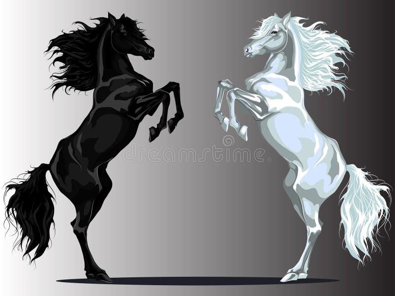 Dos caballos traseros stock de ilustración