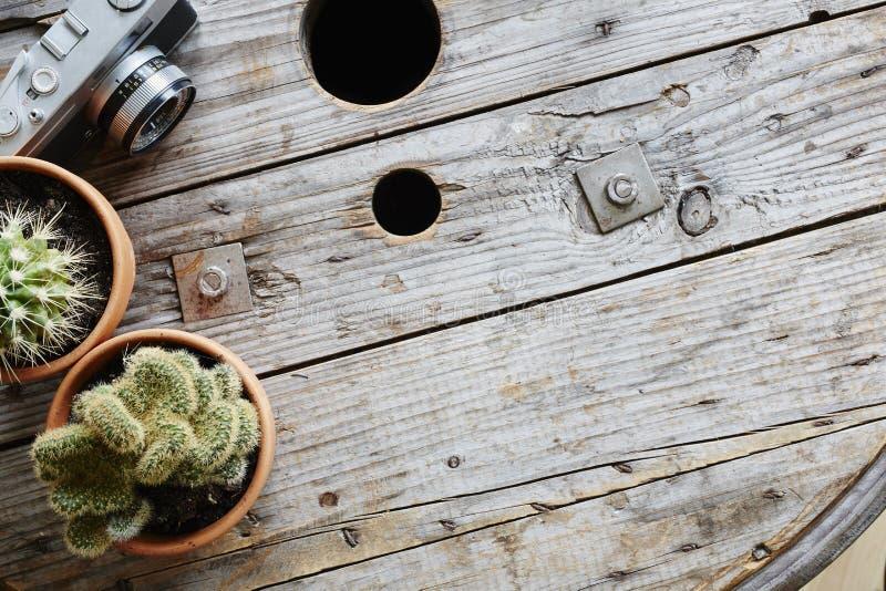 Dos cactus y cámara análoga en el tambor de cable industrial usado foto de archivo