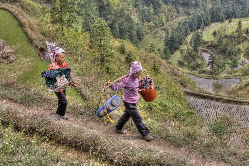 Dos campesinos chinos van a trabajar en los campos del arroz imagen de archivo