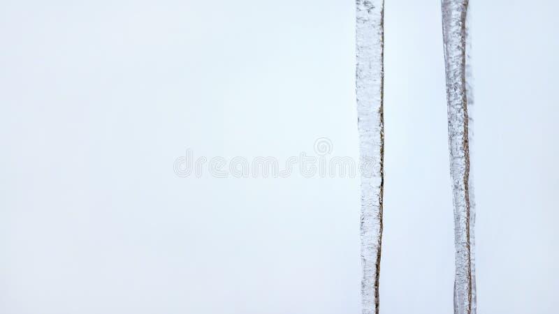 Dos carámbanos con el cielo cubierto azul claro en fondo Bandera ancha, espacio para el lado izquierdo del texto imagen de archivo