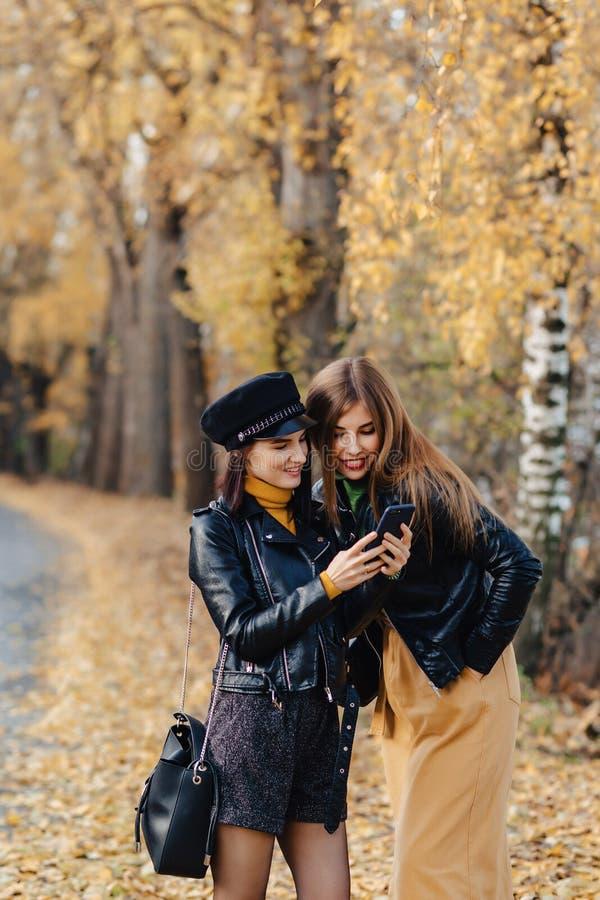 dos chicas jóvenes acogedoras caminan en el camino del parque del otoño para hacer las fotos fotografía de archivo