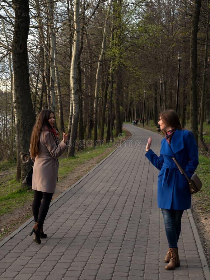 Dos chicas jóvenes felices se encontraron en el parque Amistad femenina Paseo en el parque al aire libre fotos de archivo libres de regalías