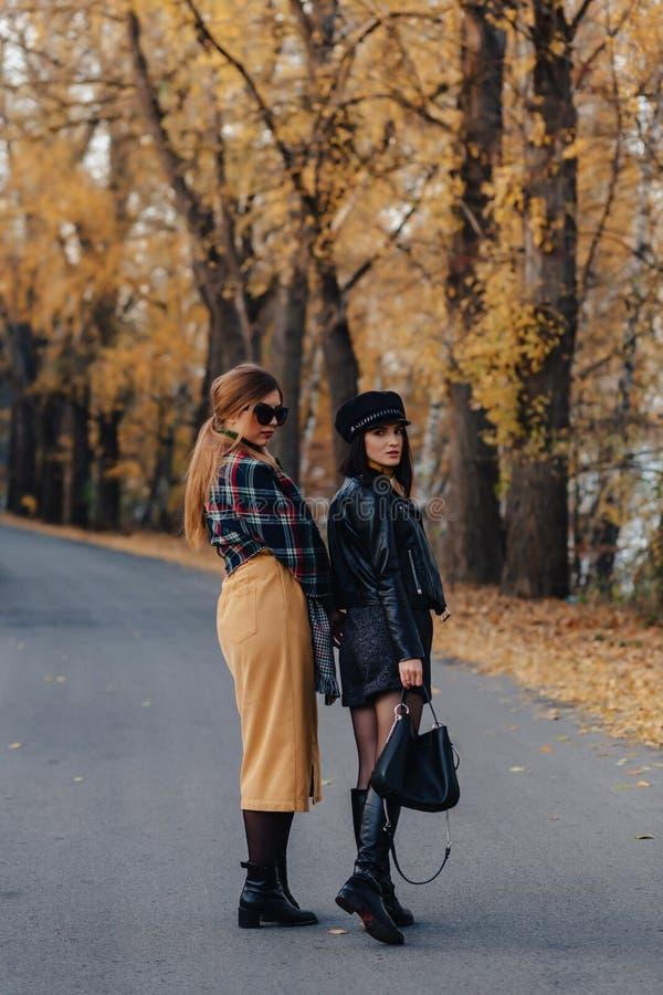Dos chicas jóvenes sonrientes acogedoras caminan en el camino del parque del otoño imagen de archivo libre de regalías