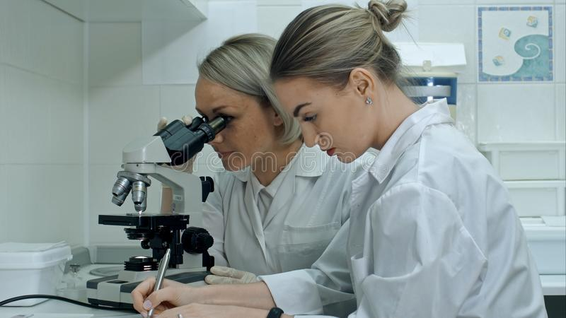 Dos científicos de sexo femenino jovenes escriben informe en laboratorio moderno, usando el microscopio y las notas de la fabrica imagen de archivo libre de regalías