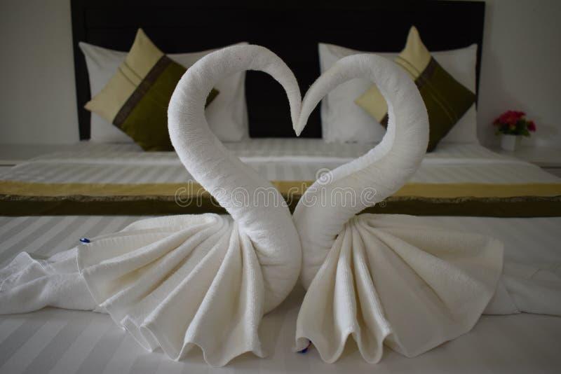 Dos cisnes blancos hechos de toallas en un hotel en Tailandia, Asia fotografía de archivo