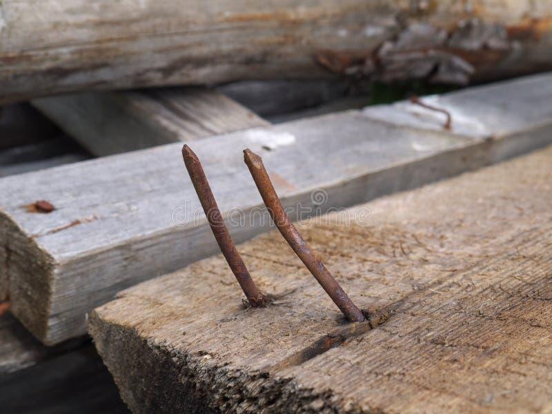 Dos clavos curvados oxidados en el tablón de madera imagen de archivo