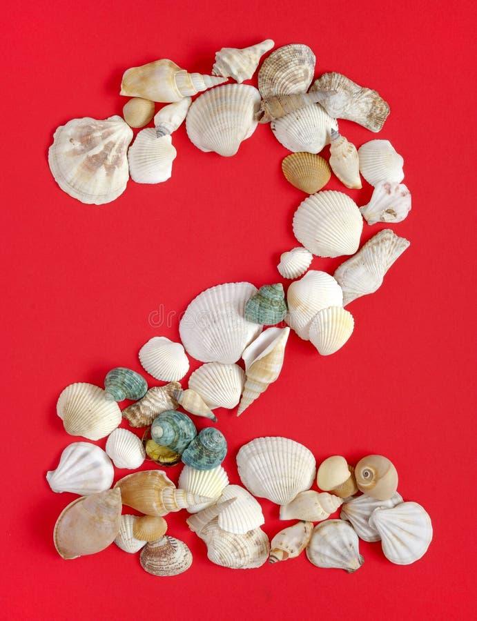 Dos con los shelles del mar fotografía de archivo libre de regalías