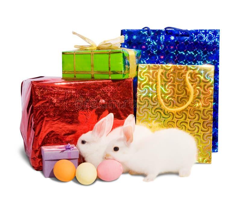 Dos conejos blancos con los regalos imagenes de archivo