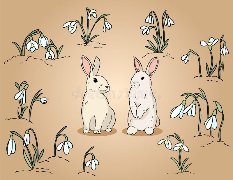 Dos conejos de pascua entre el ejemplo colorido exhausto de la mano de los snowdrops ilustración del vector