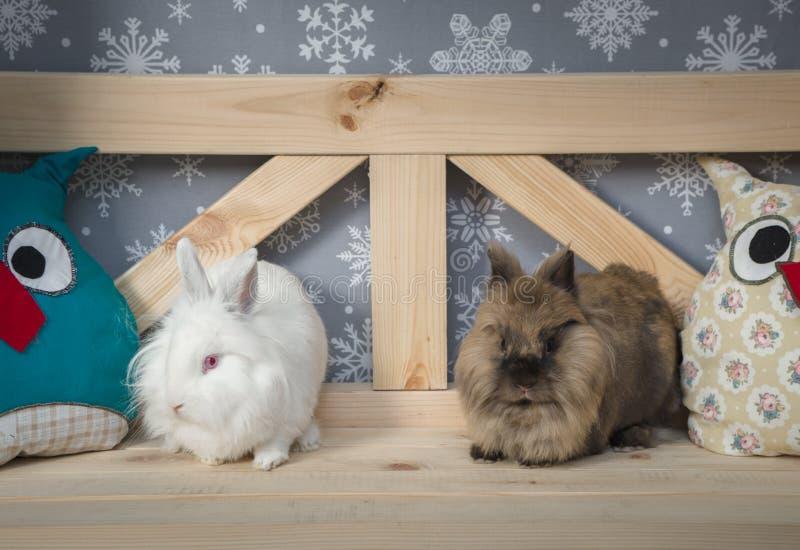 Dos conejos decorativos en un banco de madera en el fondo de copos de nieve fotografía de archivo libre de regalías