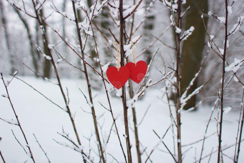 Dos corazones en invierno imagen de archivo